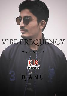 Vibe Frequency - Volume 1 DJ A N U